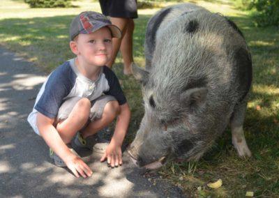 Boy&Pig
